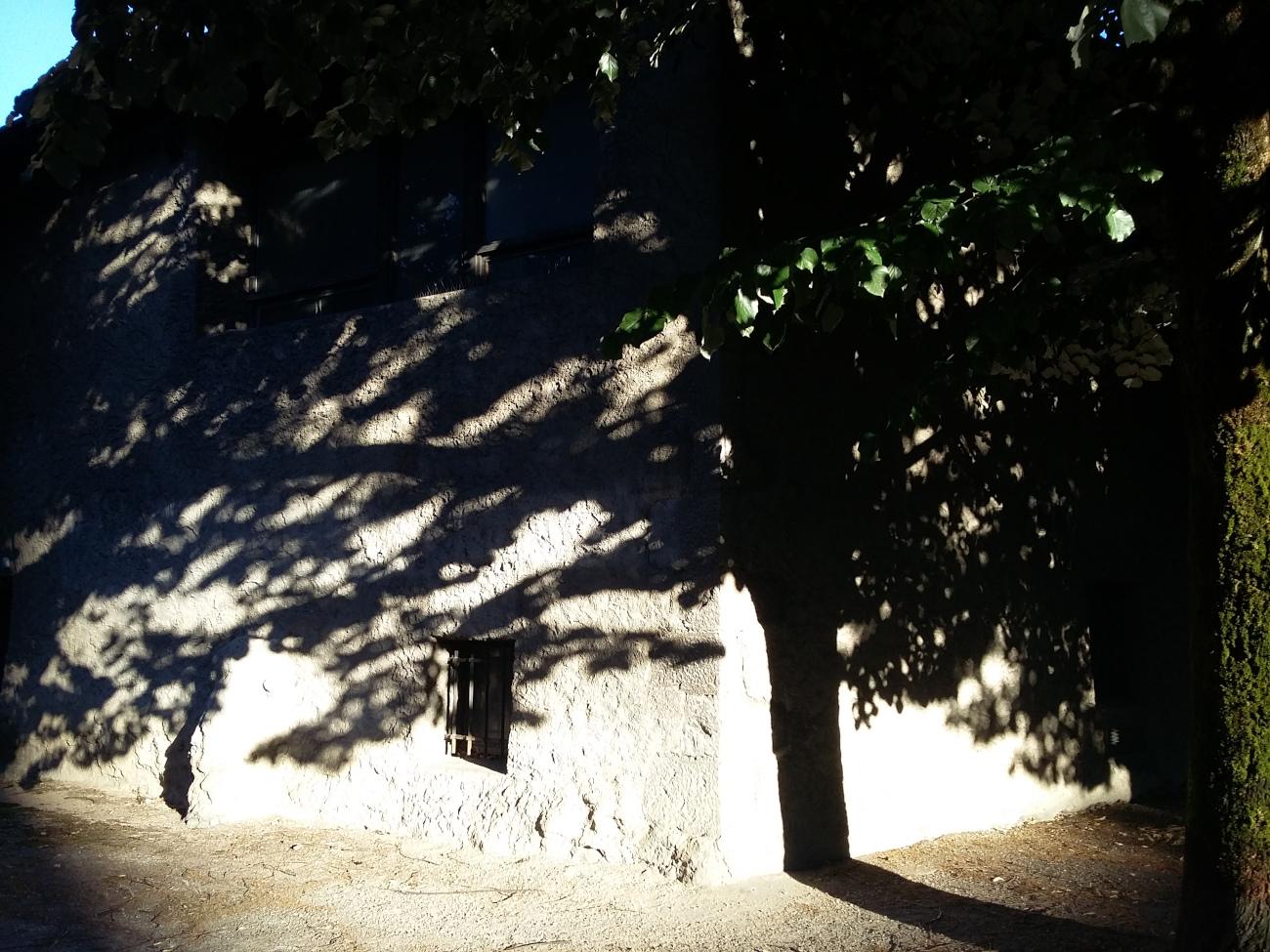 Petite lucarne et ombre d'arbre